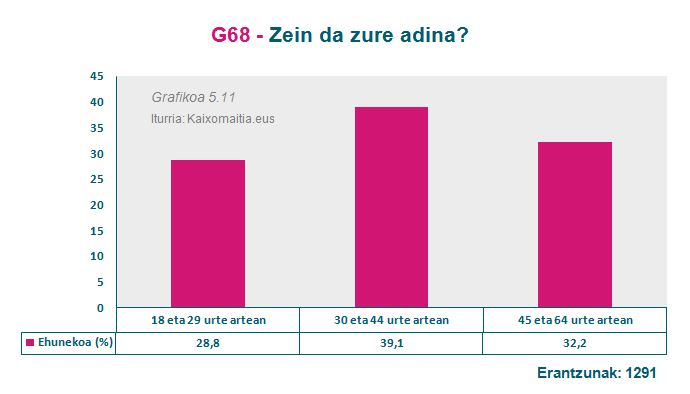 g67_adina